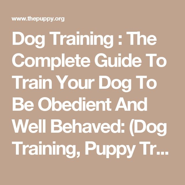 Dog Training : The Complete Guide To Train Your Dog To Be Obedient And Well Behaved: (Dog Training, Puppy Training, Pet Training, Dog Training Tips, How to Train a Dog, Dog Obedience Training) | The Puppy | Dog food, costumes and equipment