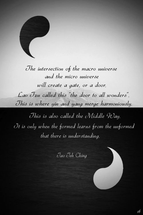 "The intersection of the macro universe and the micro universe will create a gate, or a door. Lao Tzu called this ""the door to all wonders"". This is where yin and yang merge harmoniously. This is also called the Middle Way."