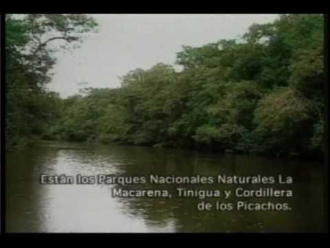 El Barcino -Silva y Villalba- (Música Colombiana)