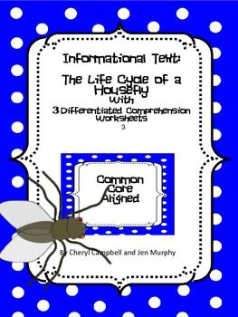 Informational Text and Questions: Life Cycle of a Housefly (Common Core Aligned) This informational text about that pesky insect, the housefly, includes content about the four stages in its life cycle.