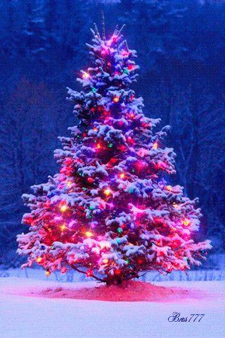 Christmas New Year Gif Pins Christmas Christmas Tree
