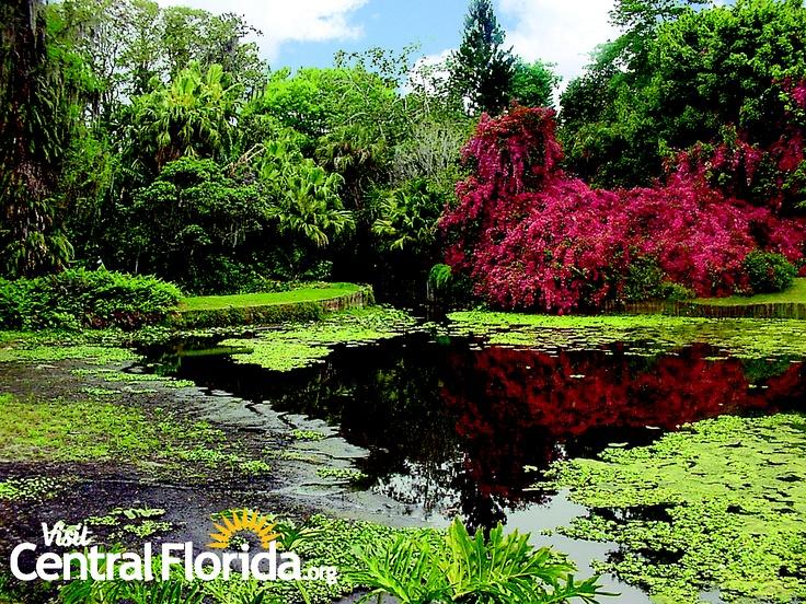 Cypress Gardens 39 Canal Winter Haven Florida Centralfl