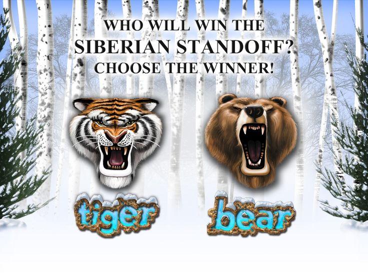 Who will win the Siberian StandOff? Choose the winner on Tiger vs Bear video slot