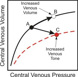 venous pressure, volume and compliance