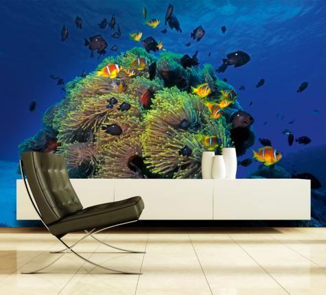 Maak van uw woonkamer, slaapkamer, gang, kantoor of etalage een aquarium met koraal en vissen. Dit foto realistisch behang zal in 6 banen (elk 70x270cm) worden geleverd. Dit brengt tot een totale grootte van 420 x 270 cm. Het fotobehang is gemaakt van dik stevig papier (1,5kg). De foto op het behang is van goede […]