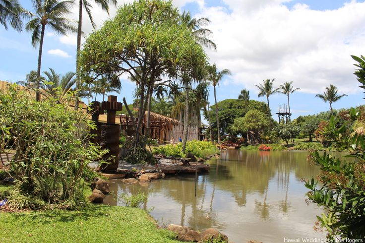 286 best images about maui wedding locations on pinterest for Maui wedding locations