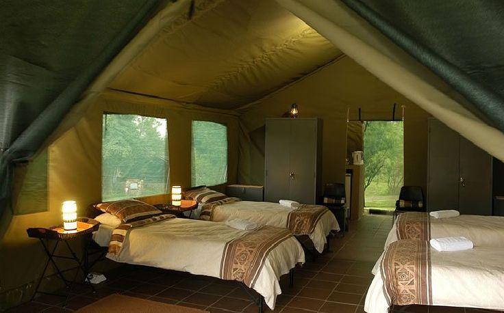 Bush Willow Tented Camp, Muldersdrift