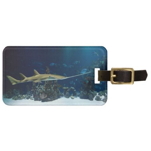Stingray Luggage Tags The best: You can write your address on the back side.