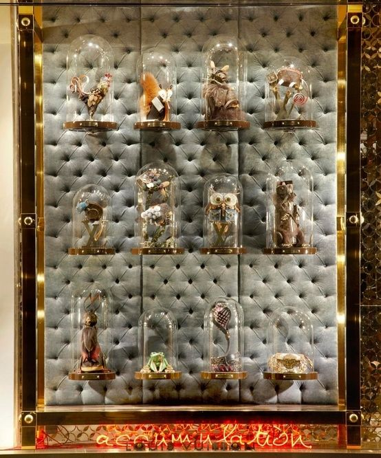 61 best Cabinet of Curiosities images on Pinterest | Cabinet of ...