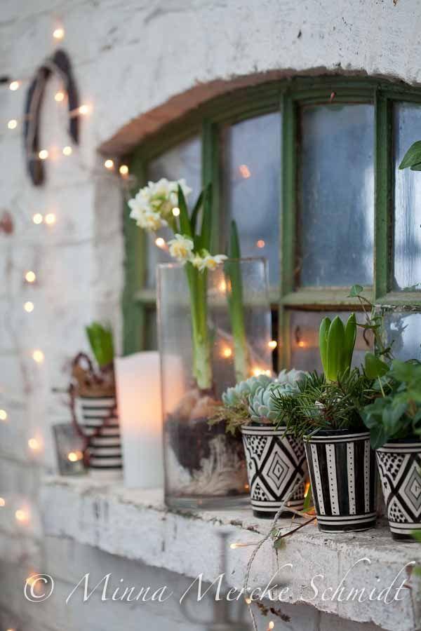 Inför julexplosionen | by blomsterverkstad | minna mercke schmidt  Sköna hem