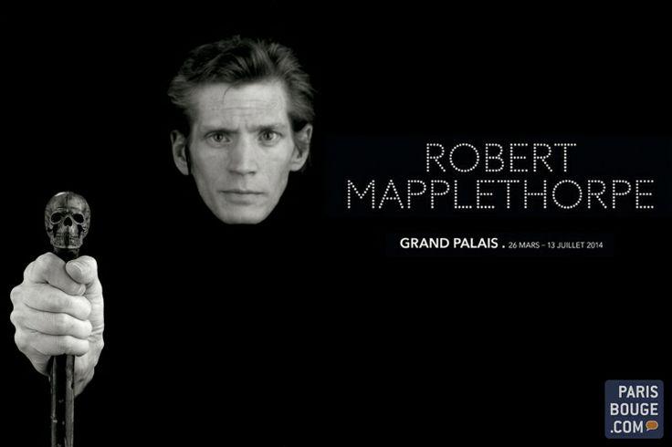 Robert Mapplethorpe : sensualité et corps sublimés au Grand Palais