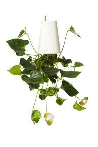 Sky Planter - der etwas andere Blumentopf als eine praktische und dennoch originelle Geschenkidee für alle, die immer wieder nach einer außergewöhnlichen Dekoration für ihre Wohnung suchen.