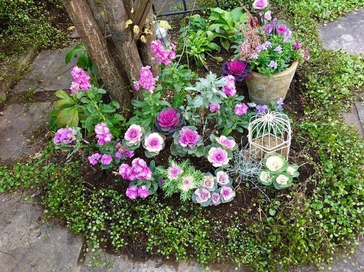 玄関前の日陰の庭の植え込み | 心地よいお庭とおうち *LE PETIT JARDIN ル プチ ジャルダン*