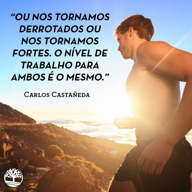 """""""Ou nos tornamos derrotados, ou nos tornamos fortes. O nível de trabalho para ambos é o mesmo."""" - Carlos Castañeda. #Frases #Motivação #Coragem"""