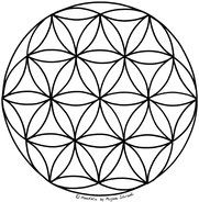Flower of Life Mandala coloring page template Mandala for printing and coloring No. 6
