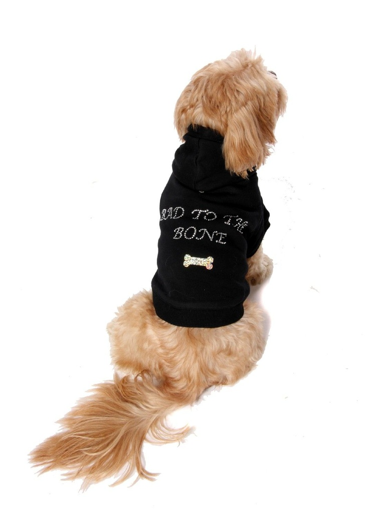 55 Best Uk Dog Fashion Outfits Images On Pinterest Dog: dog clothes design your own