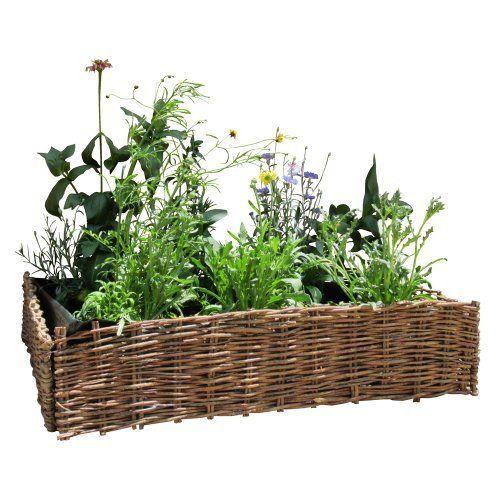 162 Best Garden Gardening Images On Pinterest