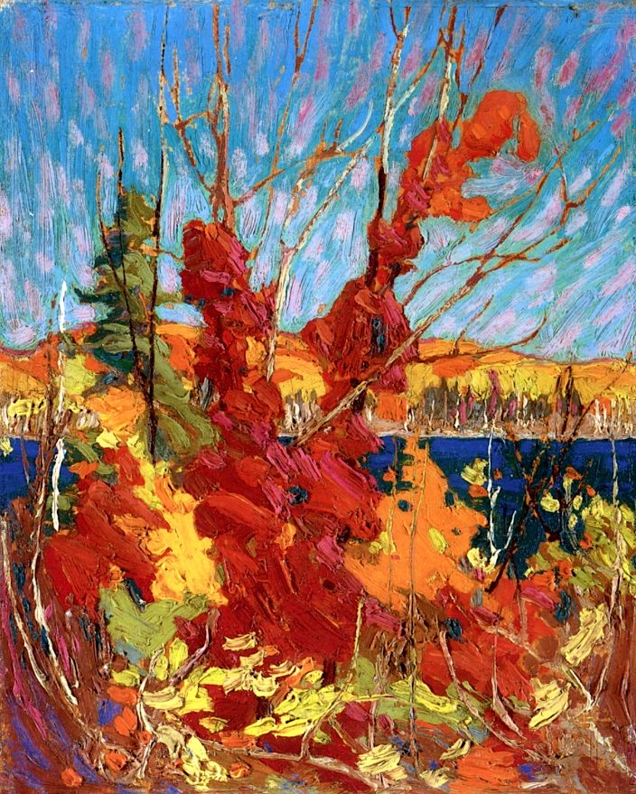 Tom Thomson - Art Nouveau, Arts&Crafts & Post Impressionnism - Autumn Foliage - 1916