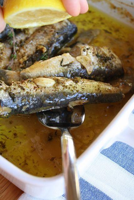 Baked Sardines — Ψητές Σαρδέλες- Kali Orexi