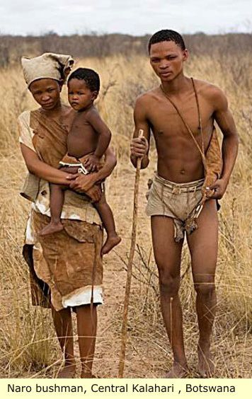 The Bushman of the Kalahari desert have been determined, by genetic analysis, the closest to the original Homo-sapien sapien in genetic makeup. They are the oldest known lineage of modern human. Originally Neanderthal and Cro-Magnon were not classed as Sapien. This designation was reserved for us, Modern man. These two early Humanoids were later re-classed as Sapien, becoming Homo-sapien neanderthalensis, and Homo-sapien Cro-Magnonensis, leaving Modern Man with the screwy name Homo-sapien…