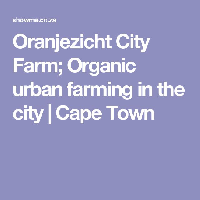 Oranjezicht City Farm; Organic urban farming in the city | Cape Town