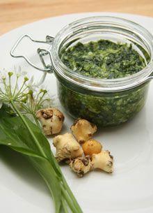 Wild garlic pesto (veganisable: try using cashews instead of dairy)
