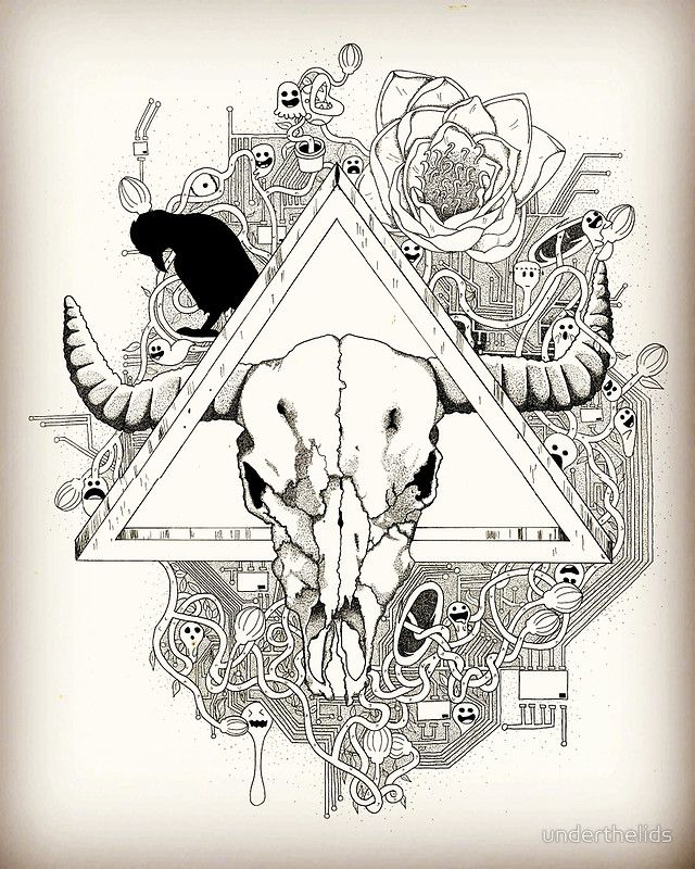 Infested skull