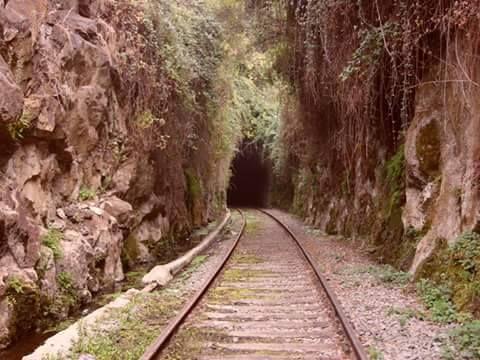 Tunel San Pedro