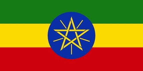 Kid World Citizen: great overview of the culture, customs, geography, etc. of Ethiopia.