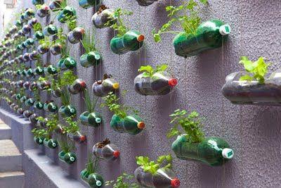 Horta vertical com reutilização de material.
