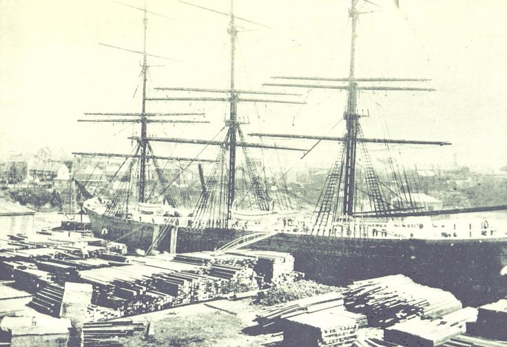 First Cargo of New South Wales Timbers for London - September 1895