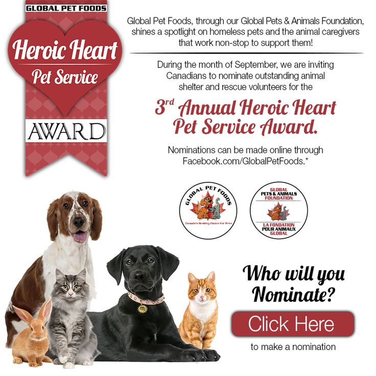 Commencing September 1st, Canadians can nominate a pet hero from a registered shelter or rescue organization by filling out an online ballot and sharing a brief story (500 words or less) describing how the nominee has demonstrated outstanding care and compassion to homeless pets. Entrants are also encouraged to share how the $1,000 donation will make a difference to the nominee's shelter or rescue. More information and nominations can be made online through www.facebook.com/globalpetfoods