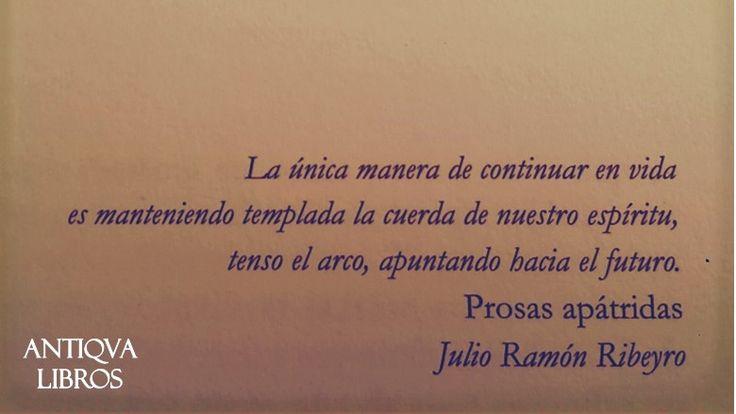 """""""La única manera de continuar en vidaProsas apátridas es manteniendo la cuerda de nuestro espíritu, tenso el arco, apuntando hacia el futuro"""", - Julio Ramón Ribeyro"""