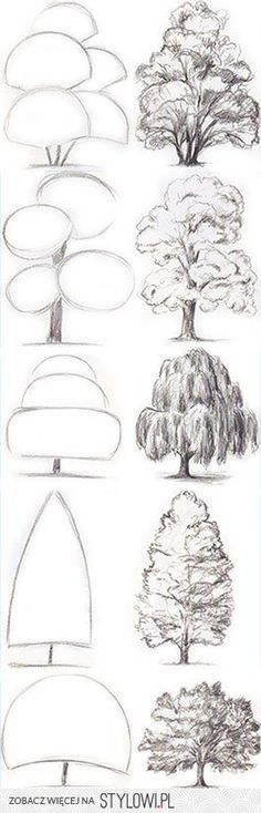 Architecture Drawing Of Trees the 25+ best tree drawings ideas on pinterest | trees drawing