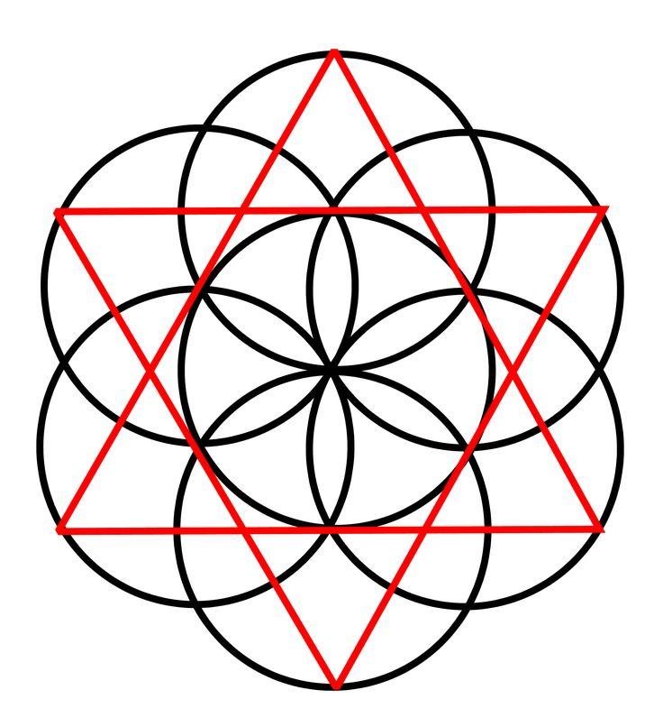 sacred geometry seed of - photo #6