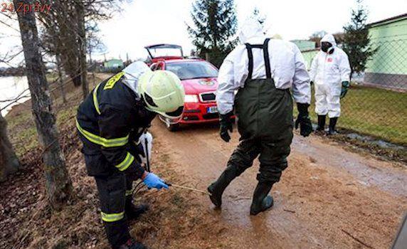 Veterináři objevili na jihu Čech druhé ohnisko ptačí chřipky. V Česku jich je sedm