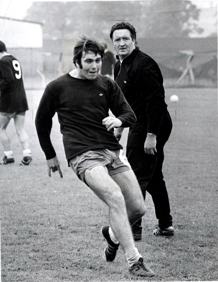 Yogi and Stein during training session