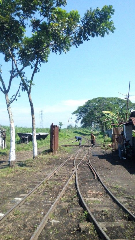 Simpang Delapan, Lumajang. Jalur lori pengangkut tebu yang masih aktiv sejak jaman Belanda. Jalur ini langsung menghubungkan lahan tebu ke pabrik gula Djatiroto. 6 Juni 2016