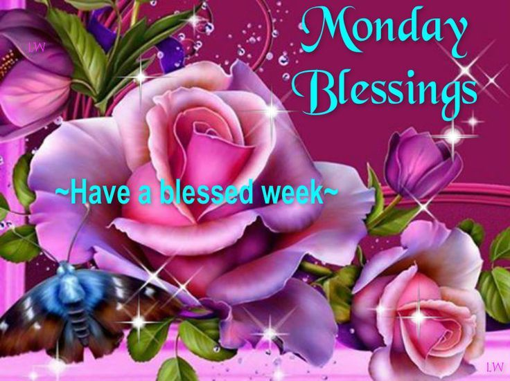 monday blessings | Monday blessings