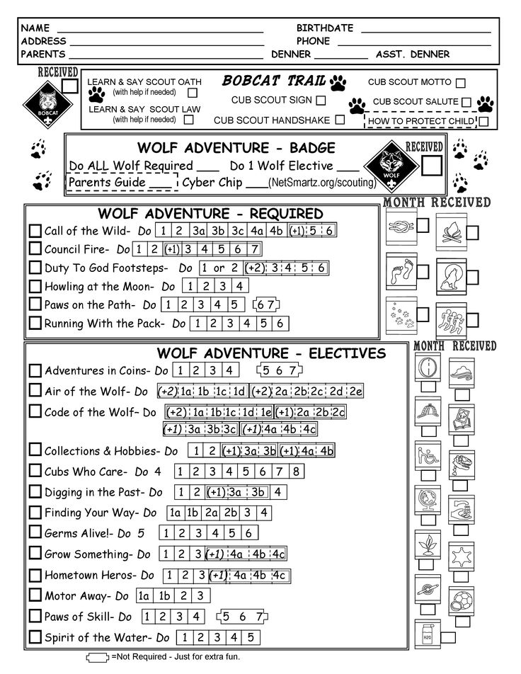 Best 25+ Cub scouts wolf ideas on Pinterest Cub scouts, Cub - boy scout medical form