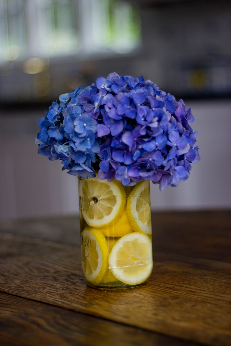 hydrangea in mason jar - - cute wedding center piece, but maybe something else instead of the oranges/lemon?