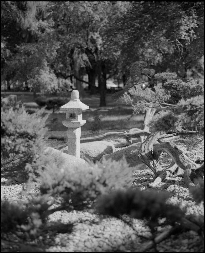 Japanese #garden #FP4 D76