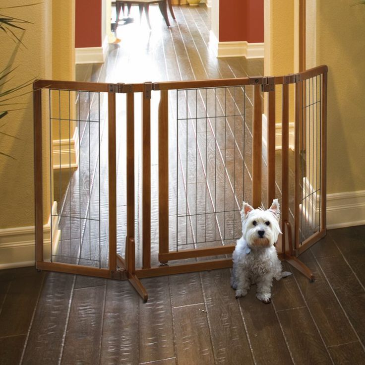 stair gate for cats