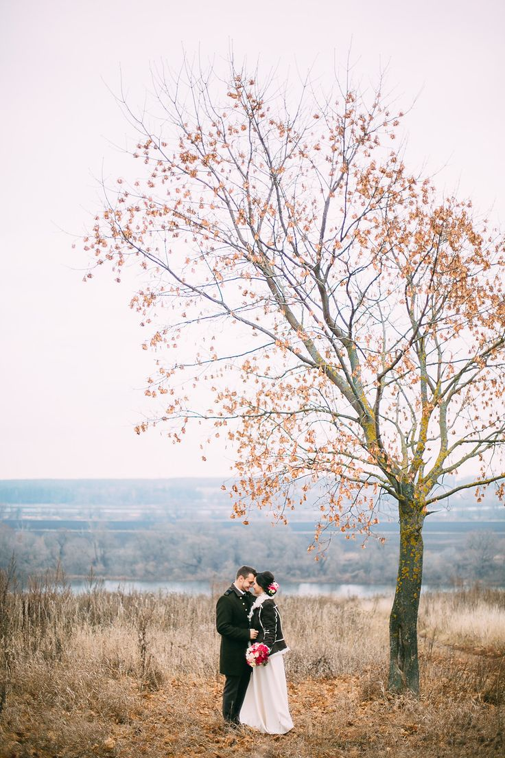The bride and groom under the tree. Beautiful wedding photography. Fine Art.  Жених и невеста под деревом. Свадьба в Коломне.
