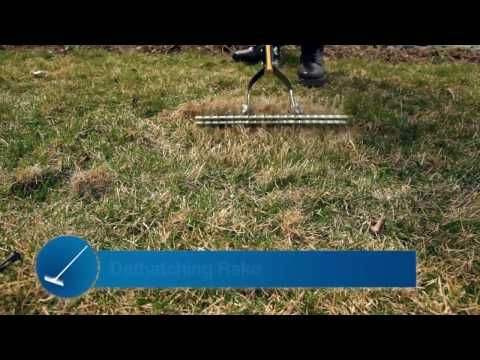 Tips for a Better Yard: Dethatching and Aerating - The secret to a healthy green lawn starts with its ability to breathe and get the proper nutrients. In this video Steve walks you through the proper way to dethach and aerate your lawn for great-looking results.