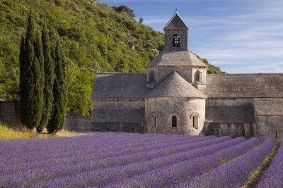 Provence, Posters and Prints at eu.art.com