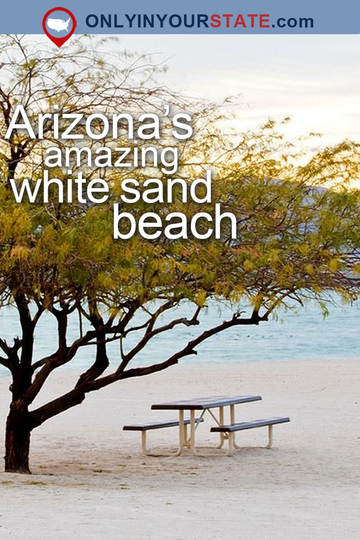Travel | Arizona | USA | Attractions | Hidden Gems | Destinations | State Parks | Outdoors | Adventure | Beaches | White Sand | Summer | Exotic | Lake Havasu | Arizona Beach | Things To Do | Day Trips | Windsor Beach | Cattail Cove | Natural Beauty | Places To Visit | Swimming | Nature | Camping | Cities | Vacations
