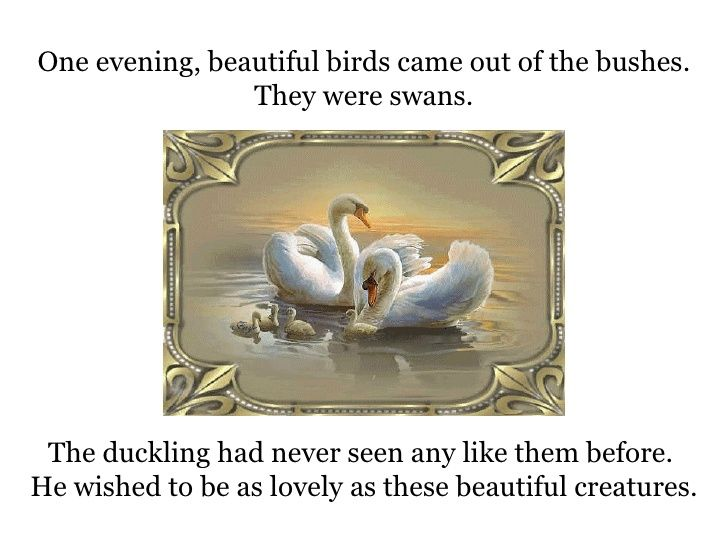 StoryTelling - The Ugly Duckling