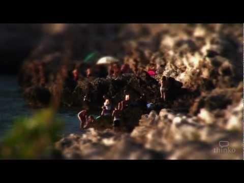 Il Salento, in un Video, come non l'avevi mai visto.  DIVENTA FAN