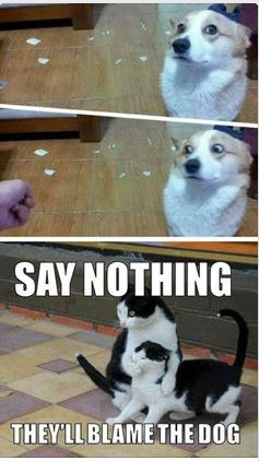 So funny…. http://www.FunnyBundle.com